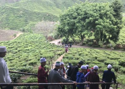 madrasah-irsyadul-quran-cameron-highland-bharat-tea-valley-21