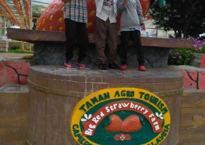 madrasah-irsyadul-quran-cameron-highland-rose-&-big-red-strawbery-farm-23